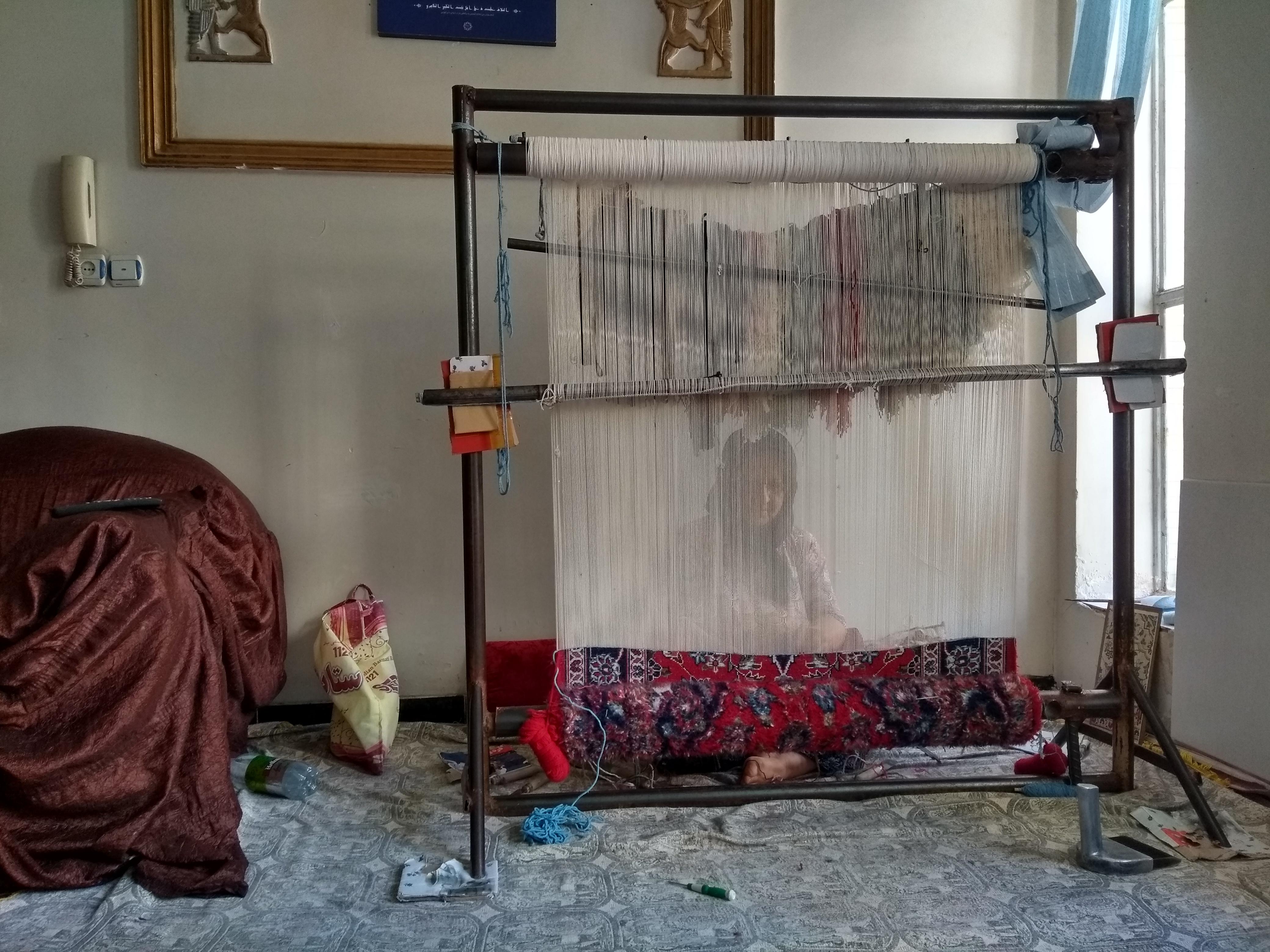dona cosint Shiraz